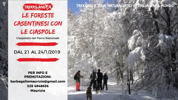Ciaspolata foreste casentinesi in toscana