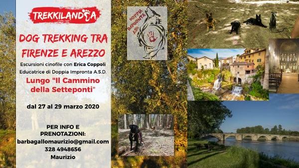 Dog Trekking Toscana cammino della sette ponti tra firenze e arezzo